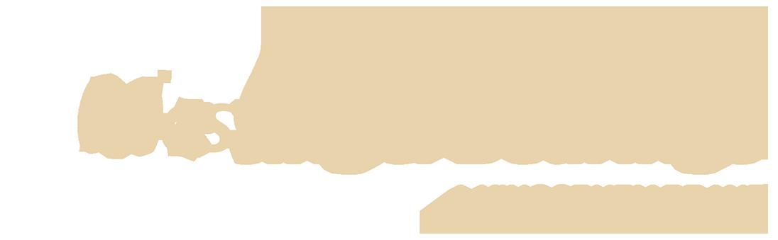 Tilting Pad Thrust Bearings: Design Selections | Kingsbury, Inc